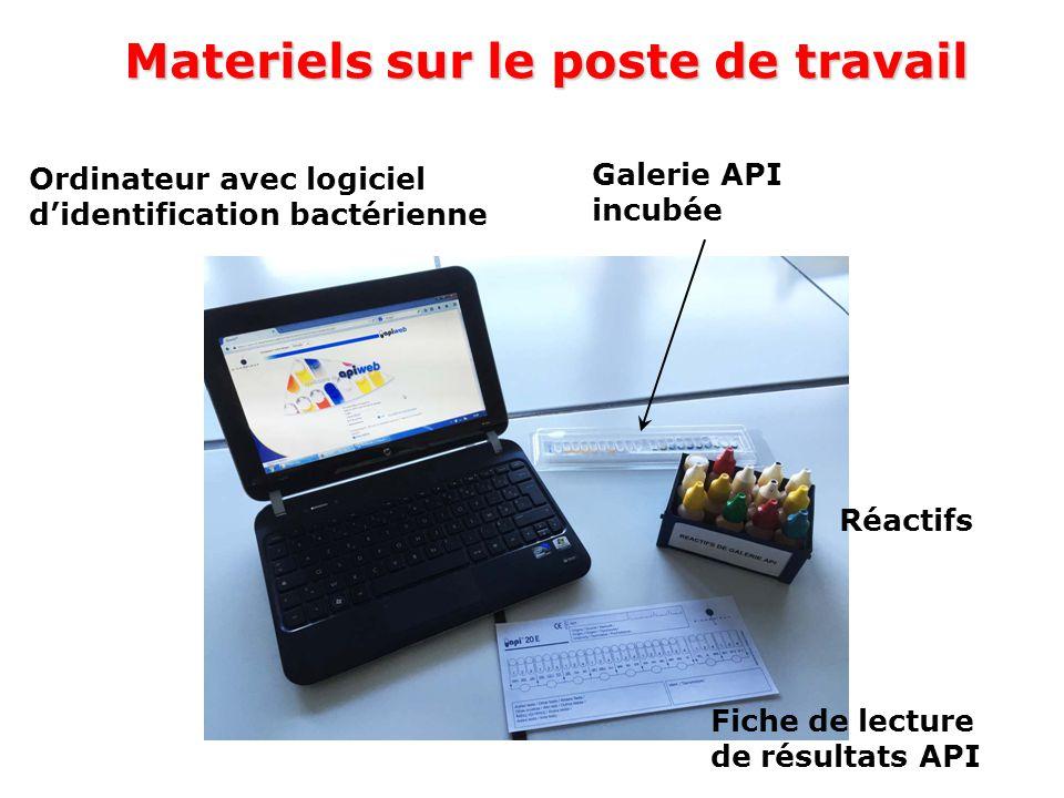 Materiels sur le poste de travail Ordinateur avec logiciel d'identification bactérienne Galerie API incubée Réactifs Fiche de lecture de résultats API