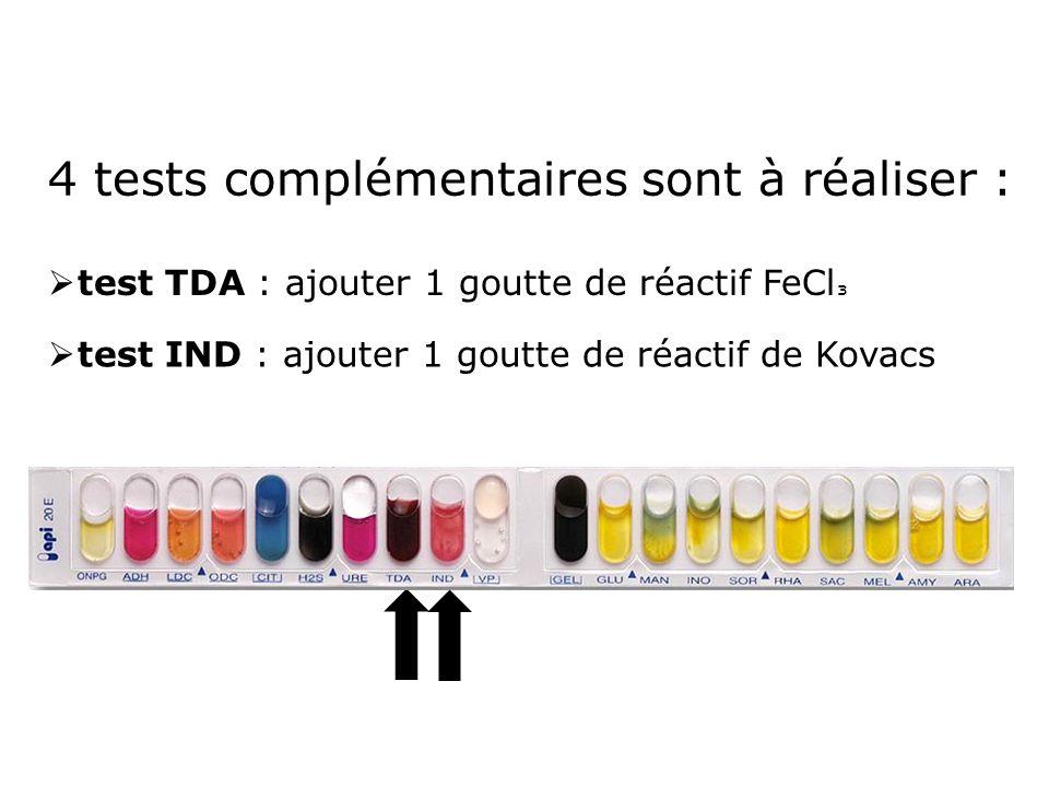 4 tests complémentaires sont à réaliser :  test TDA : ajouter 1 goutte de réactif FeCl ³  test IND : ajouter 1 goutte de réactif de Kovacs