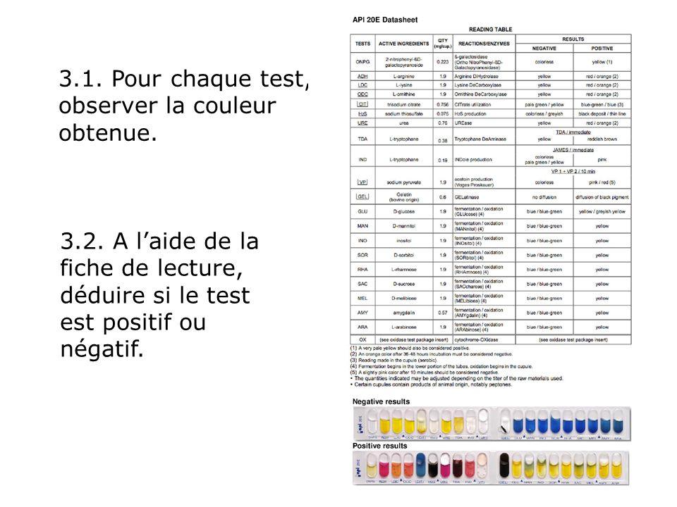 3.1.Pour chaque test, observer la couleur obtenue.