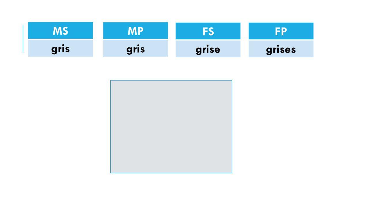 MS gris FP grises FS grise MP gris