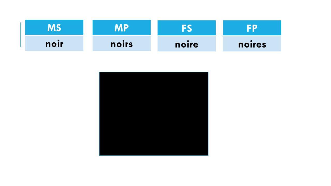 MS noir FP noires FS noire MP noirs