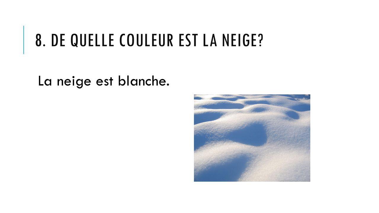 8. DE QUELLE COULEUR EST LA NEIGE? La neige est blanche.