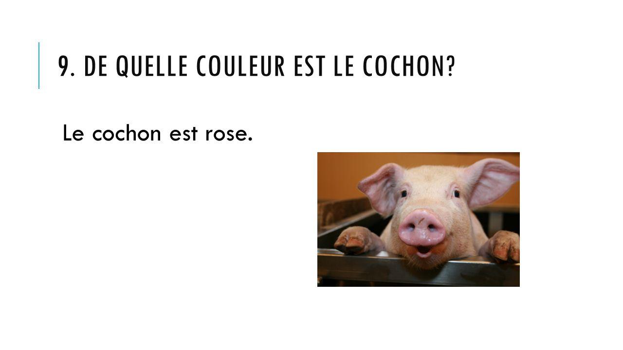 9. DE QUELLE COULEUR EST LE COCHON? Le cochon est rose.