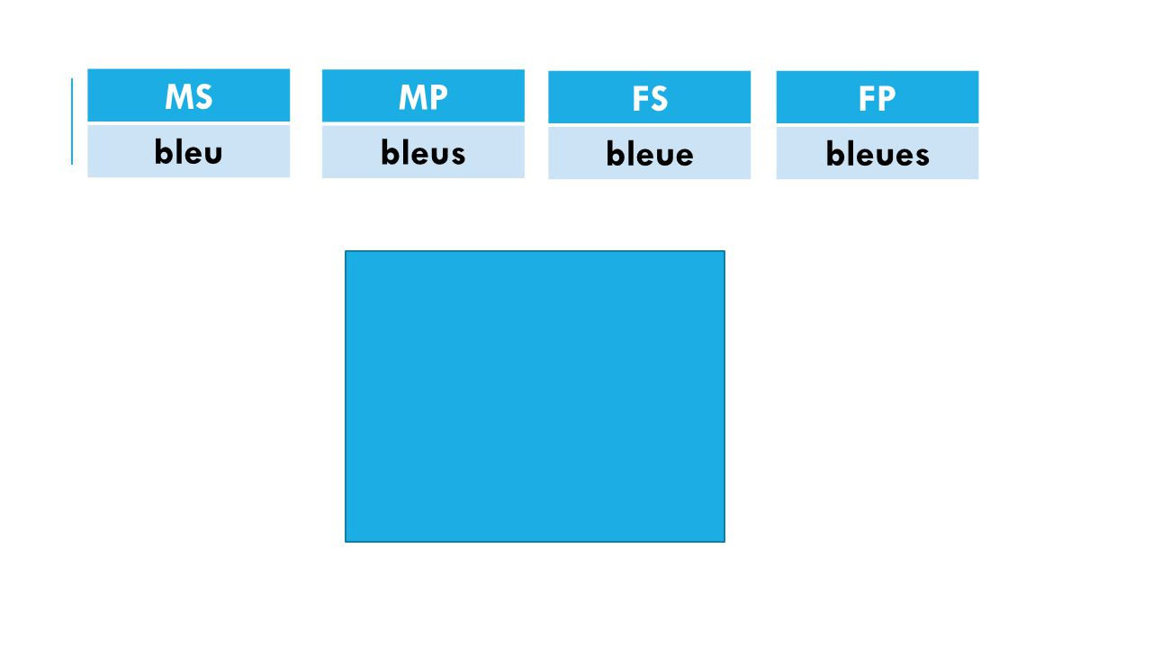 MS bleu FP bleues FS bleue MP bleus
