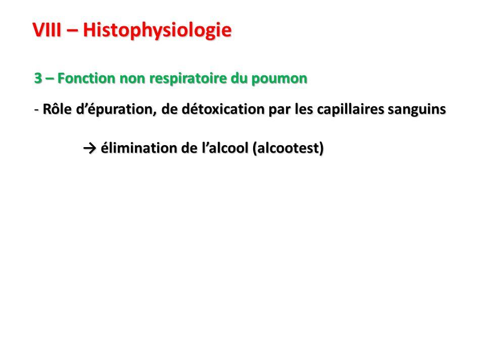 VIII – Histophysiologie 3 – Fonction non respiratoire du poumon - Rôle d'épuration, de détoxication par les capillaires sanguins → élimination de l'alcool (alcootest)