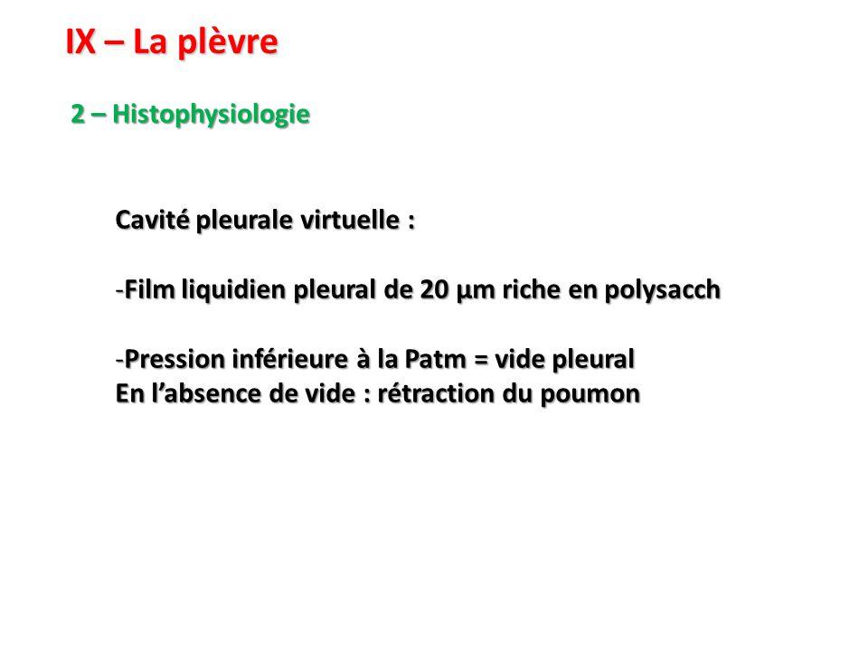 IX – La plèvre 2 – Histophysiologie Cavité pleurale virtuelle : -Film liquidien pleural de 20 µm riche en polysacch -Pression inférieure à la Patm = vide pleural En l'absence de vide : rétraction du poumon