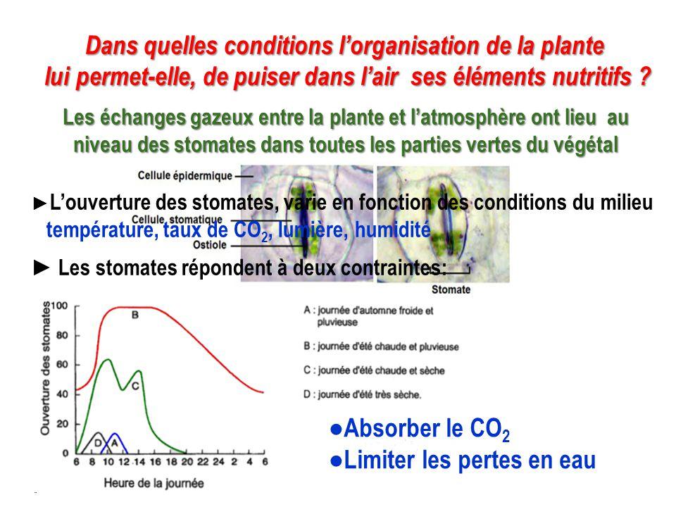 Évaporation H 2 O Photosynthèse= matière organique du végétal Photosynthèse= matière organique du végétal Evaporation H 2 O Sève+ minéraux Sève +matière organique Sève O2O2 O2O2