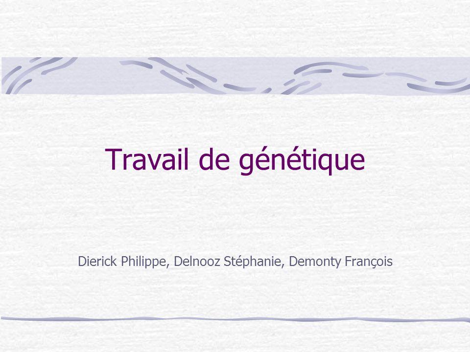 Travail de génétique Dierick Philippe, Delnooz Stéphanie, Demonty François