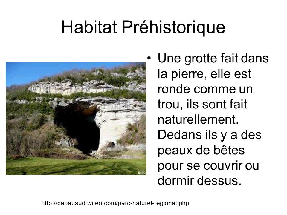 Habitat Préhistorique Une grotte fait dans la pierre, elle est ronde comme un trou, ils sont fait naturellement.
