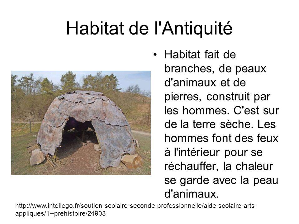 Habitat de l Antiquité Habitat fait de branches, de peaux d animaux et de pierres, construit par les hommes.