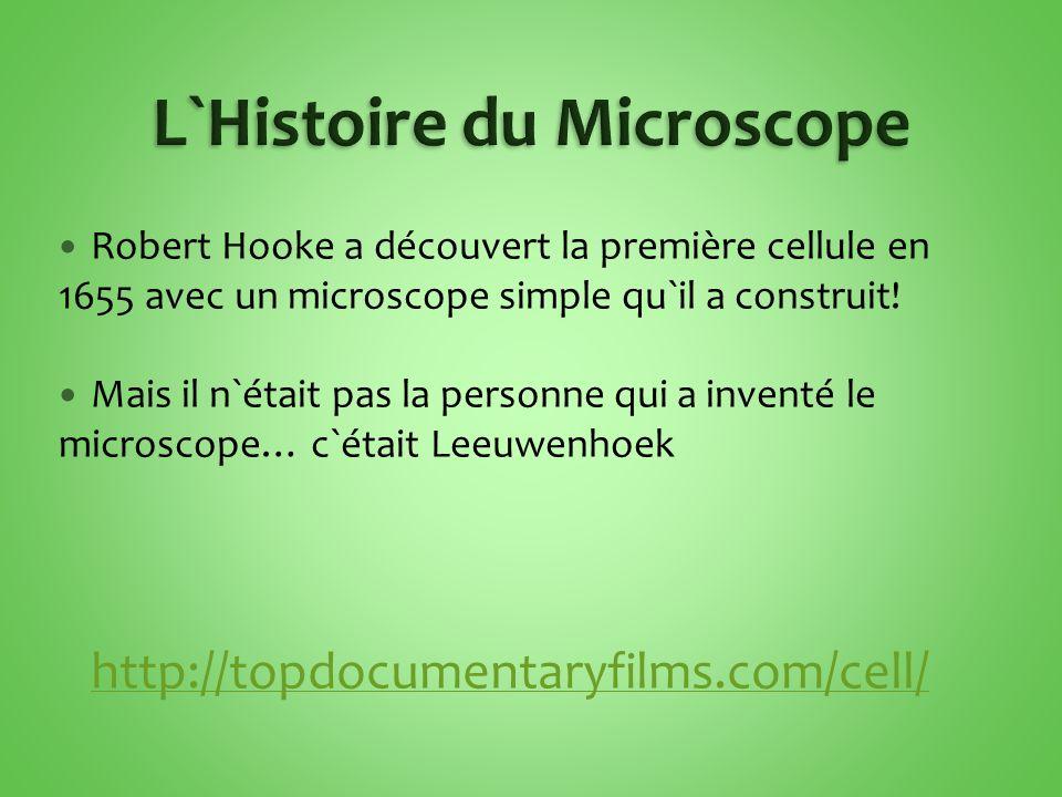 Il prend une système de deux lentilles:  Une dans l`oculaire  Une dans l`objectif (il y a une dans chacun) Le microscope composé est capable de grossir des images jusqu`à 2000 fois plus grand que l`originel