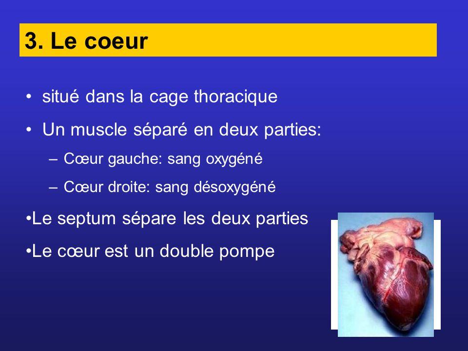 Valvules artificielles On peut aussi utiliser des valvules de porc
