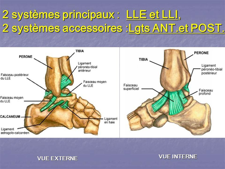 2 systèmes principaux : LLE et LLI, 2 systèmes accessoires :Lgts ANT.et POST.