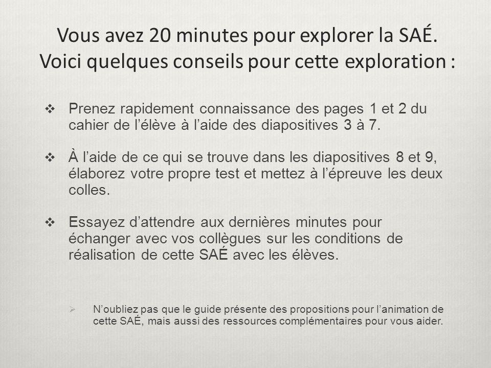 Vous avez 20 minutes pour explorer la SAÉ.