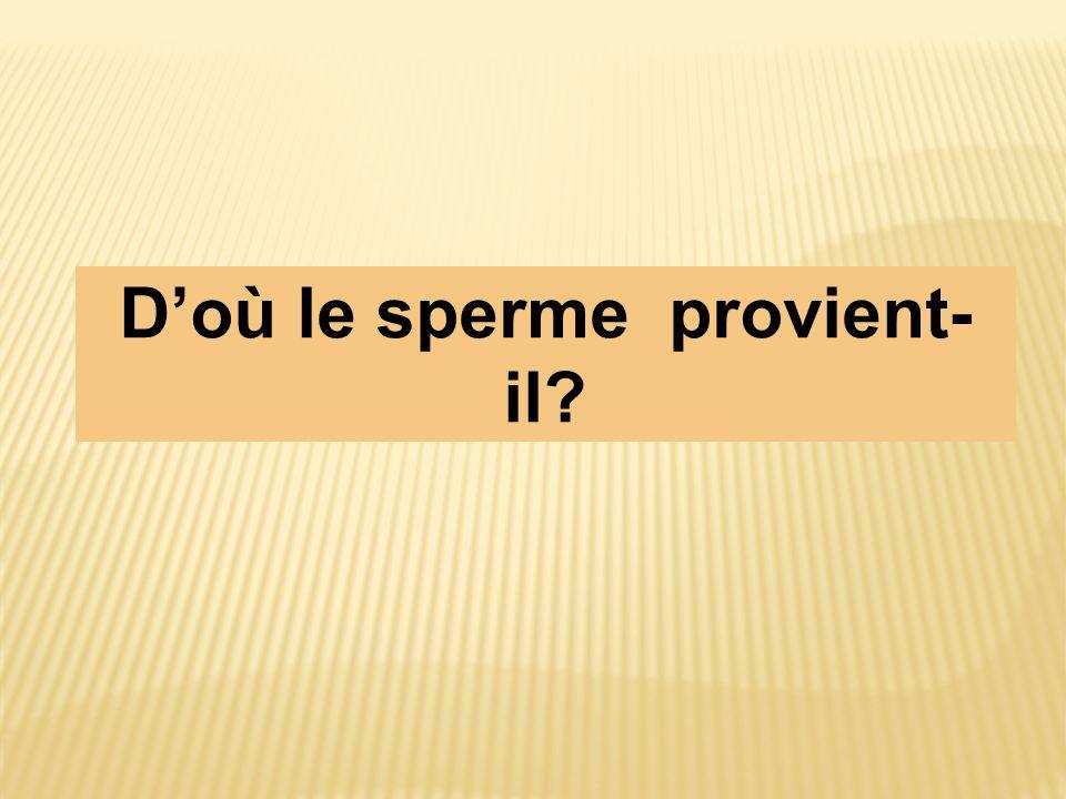 D'où le sperme provient- il?