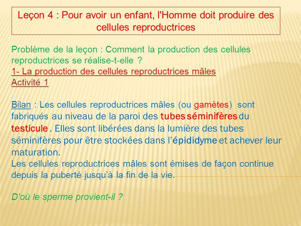 Leçon 4 : Pour avoir un enfant, l'Homme doit produire des cellules reproductrices Problème de la leçon : Comment la production des cellules reproductr