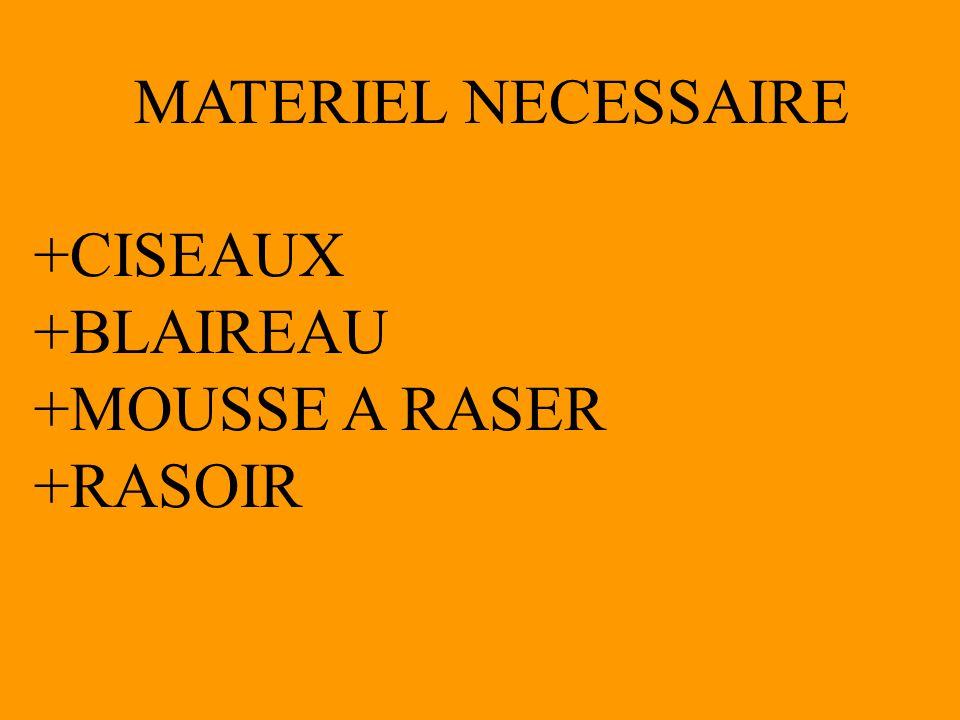 MATERIEL NECESSAIRE +CISEAUX +BLAIREAU +MOUSSE A RASER +RASOIR