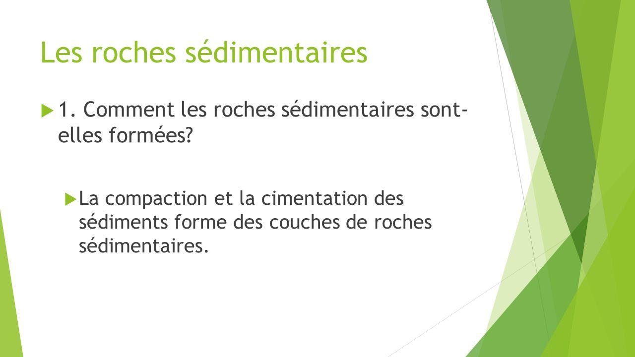 Les roches sédimentaires  1. Comment les roches sédimentaires sont- elles formées?  La compaction et la cimentation des sédiments forme des couches