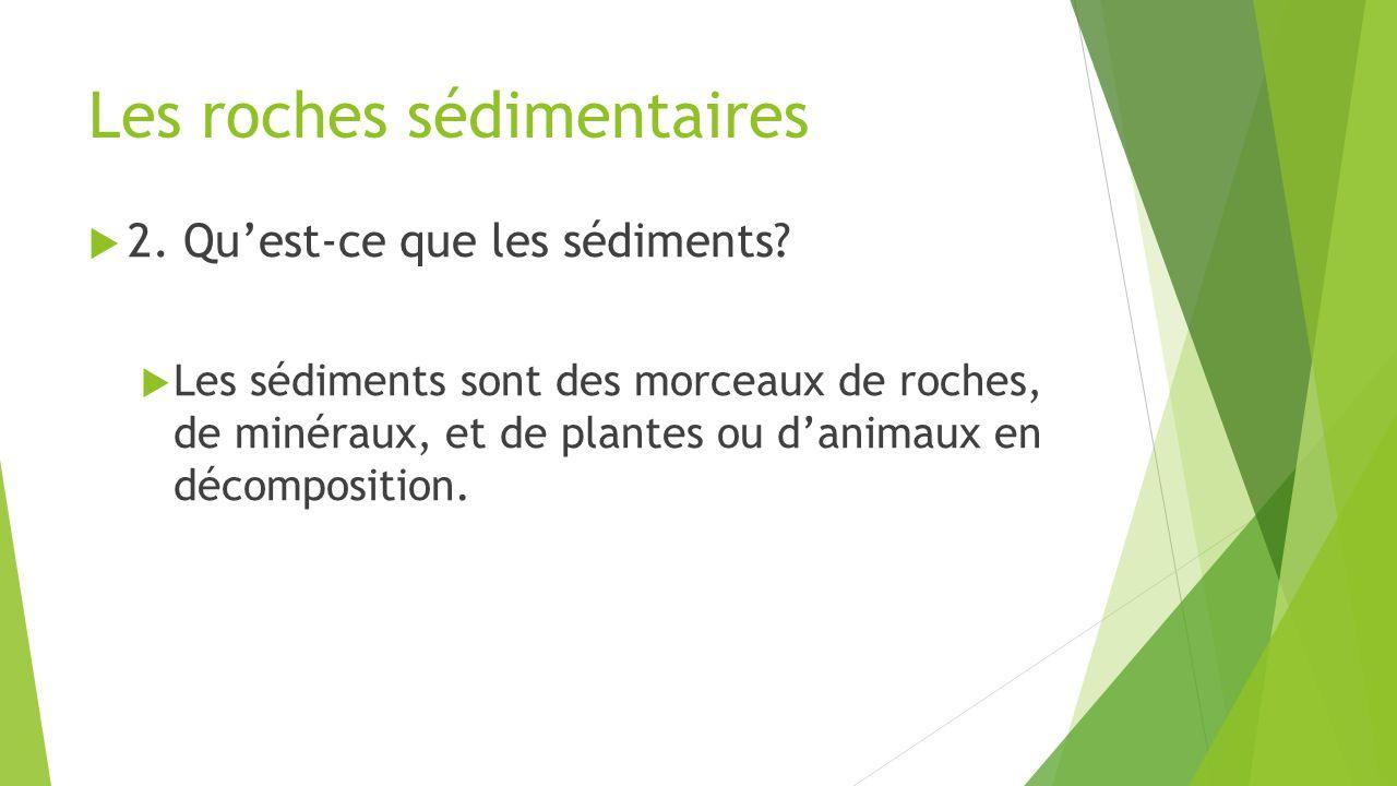 Les roches sédimentaires  2. Qu'est-ce que les sédiments?  Les sédiments sont des morceaux de roches, de minéraux, et de plantes ou d'animaux en déc