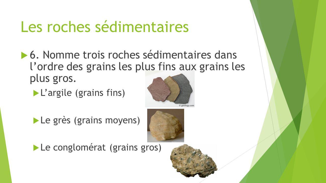 Les roches sédimentaires  6. Nomme trois roches sédimentaires dans l'ordre des grains les plus fins aux grains les plus gros.  L'argile (grains fins