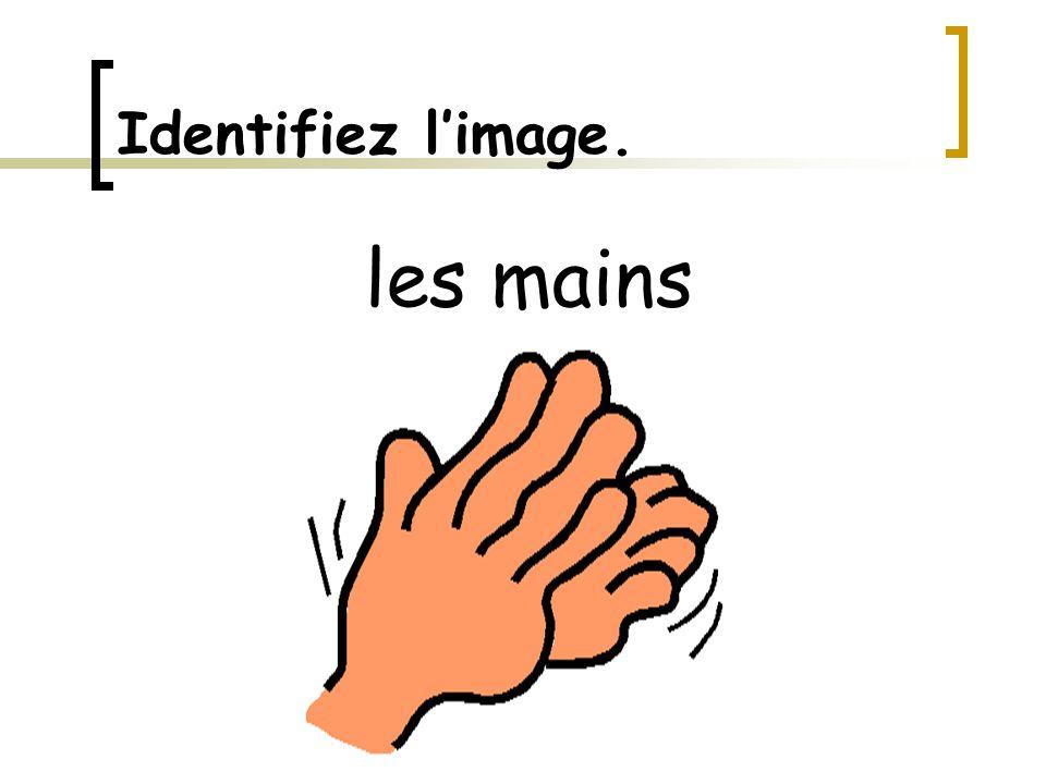 Identifiez l'image. les mains