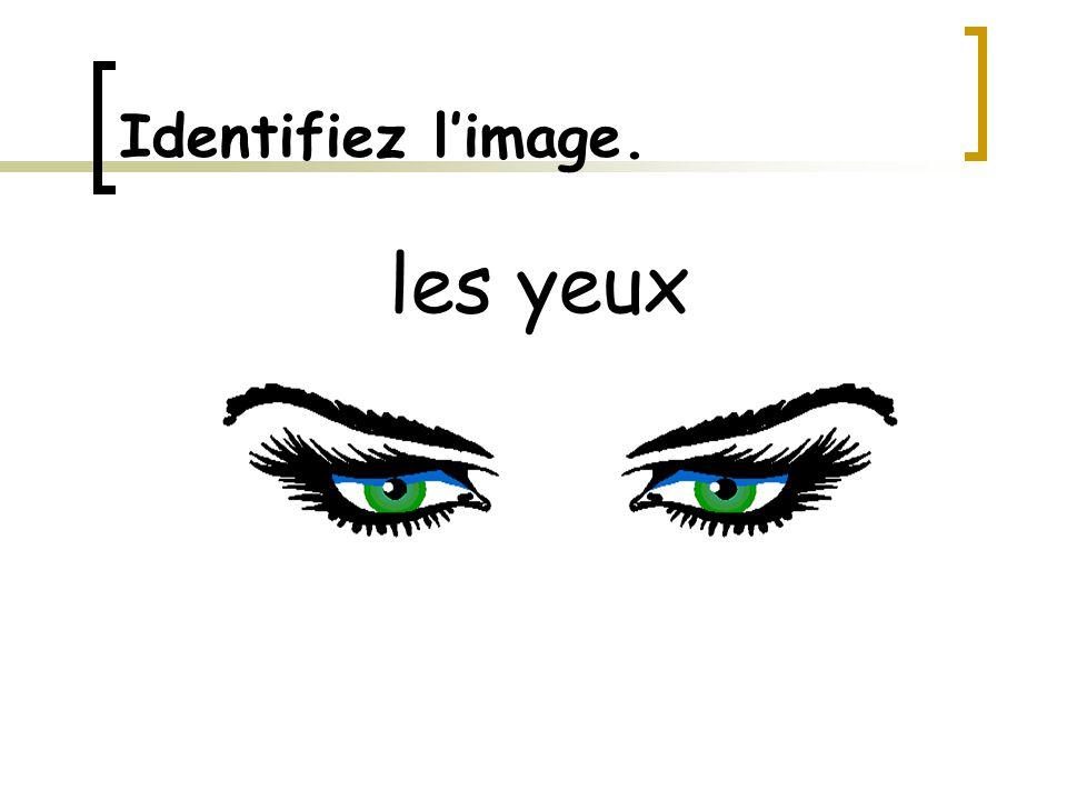 Identifiez l'image. les yeux