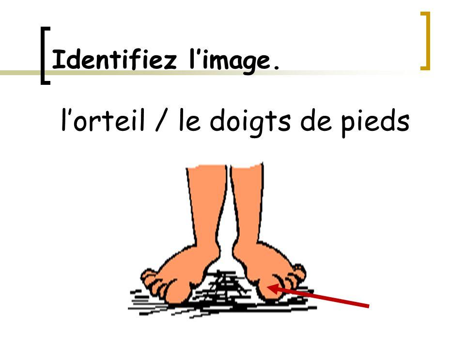 Identifiez l'image. l'orteil / le doigts de pieds
