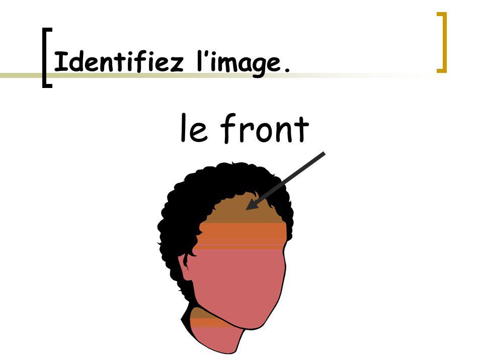 Identifiez l'image. le front