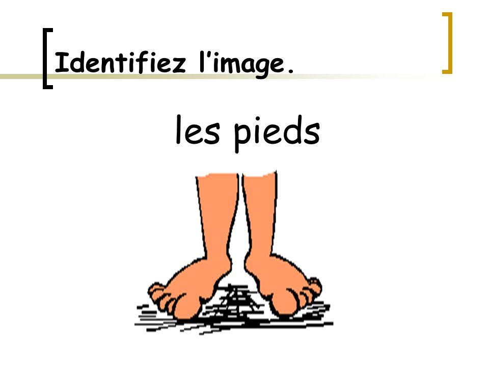 Identifiez l'image. les pieds