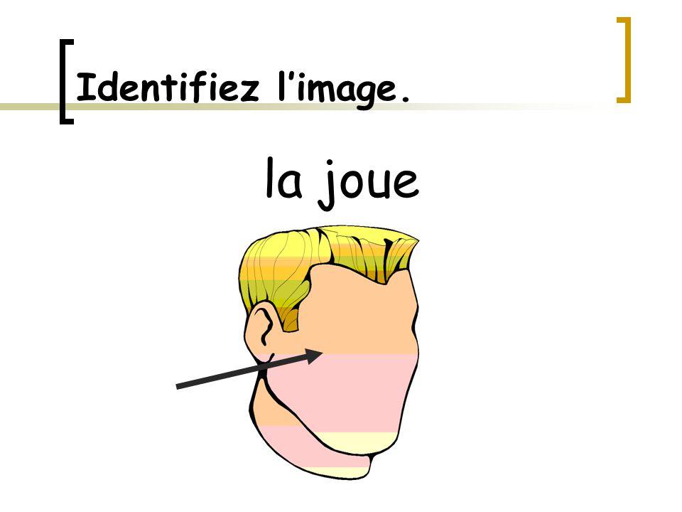 Identifiez l'image. la langue