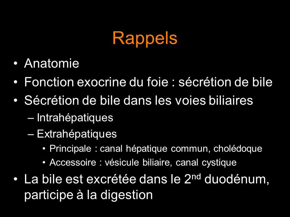 Rappels Anatomie Fonction exocrine du foie : sécrétion de bile Sécrétion de bile dans les voies biliaires –Intrahépatiques –Extrahépatiques Principale