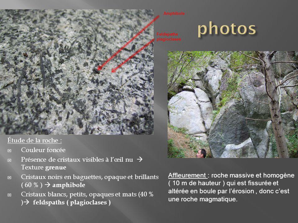 Étude de la roche :  Couleur foncée  Présence de cristaux visibles à l'œil nu  Texture grenue  Cristaux noirs en baguettes, opaque et brillants (