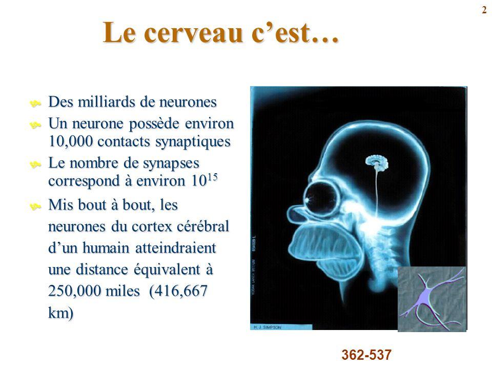 2 Le cerveau c'est…  Des milliards de neurones  Un neurone possède environ 10,000 contacts synaptiques  Le nombre de synapses correspond à environ