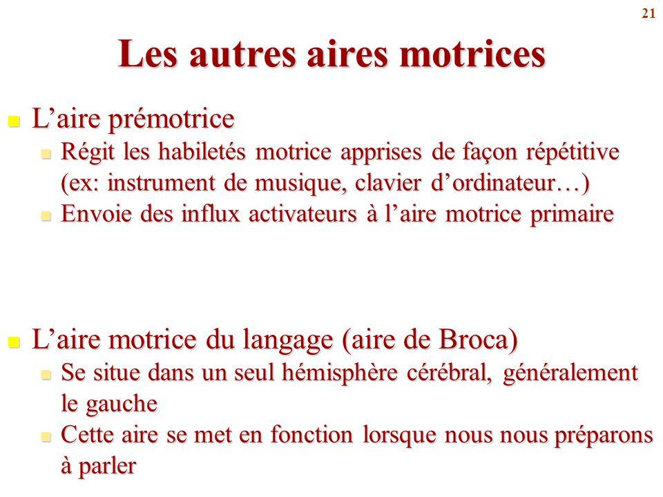 21 Les autres aires motrices L'aire prémotrice L'aire prémotrice Régit les habiletés motrice apprises de façon répétitive (ex: instrument de musique,