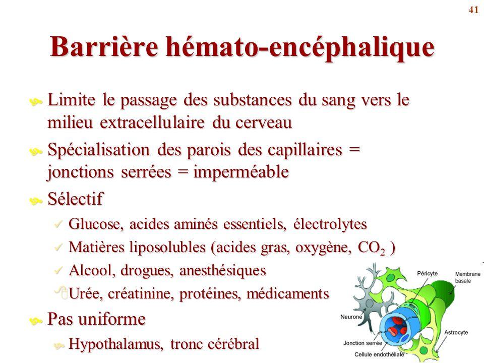 41 Barrière hémato-encéphalique  Limite le passage des substances du sang vers le milieu extracellulaire du cerveau  Spécialisation des parois des c