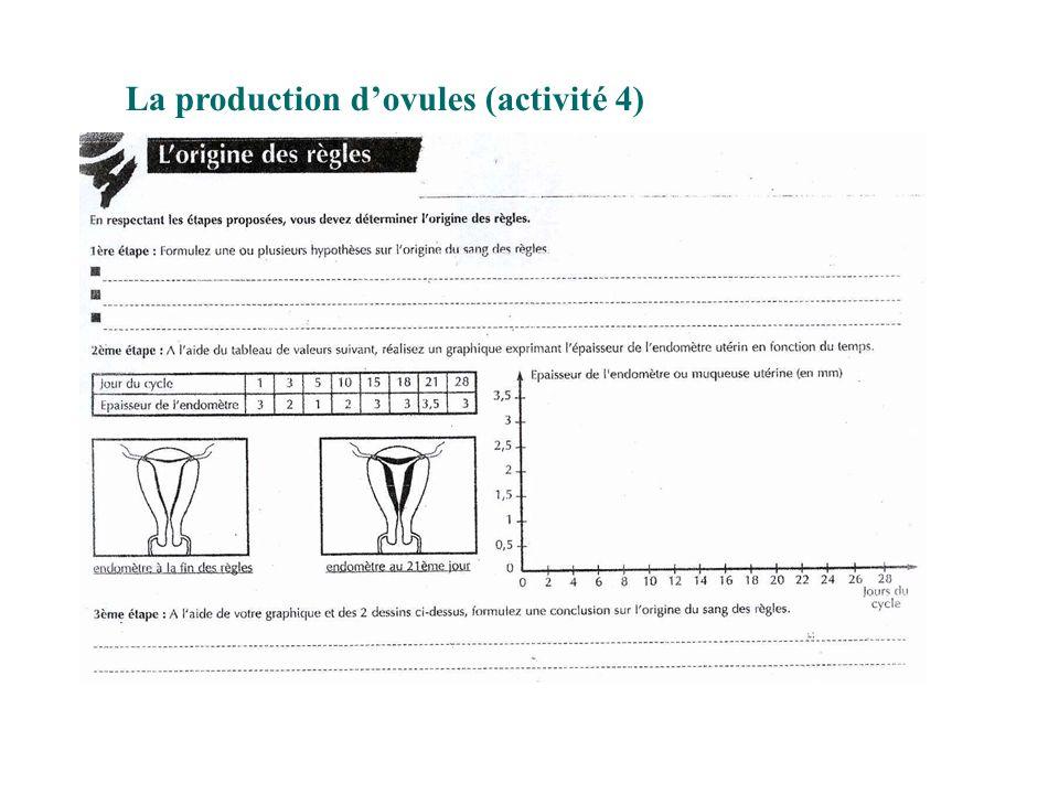 La production d'ovules (activité 4)