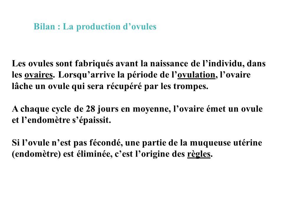 Bilan : La production d'ovules Les ovules sont fabriqués avant la naissance de l'individu, dans les ovaires.