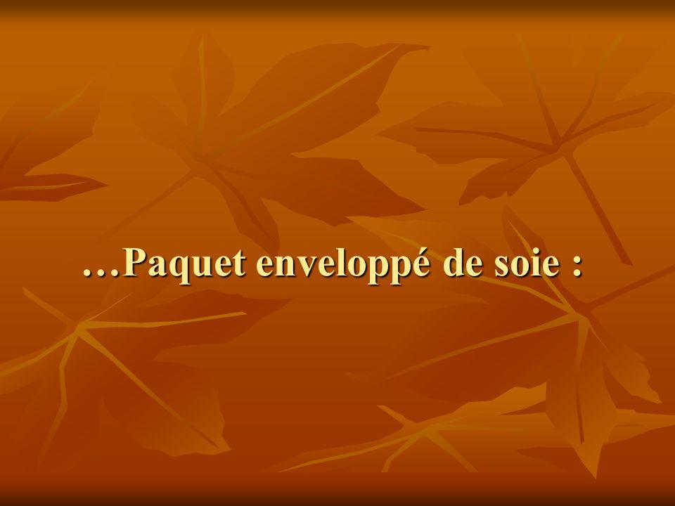 …Paquet enveloppé de soie : …Paquet enveloppé de soie :