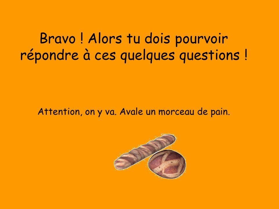 Bravo ! Alors tu dois pourvoir répondre à ces quelques questions ! Attention, on y va. Avale un morceau de pain.