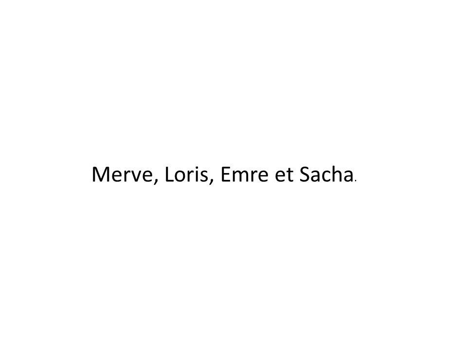 Merve, Loris, Emre et Sacha.