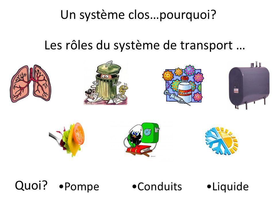 Les rôles du système de transport … Un système clos…pourquoi? Quoi? PompeConduitsLiquide