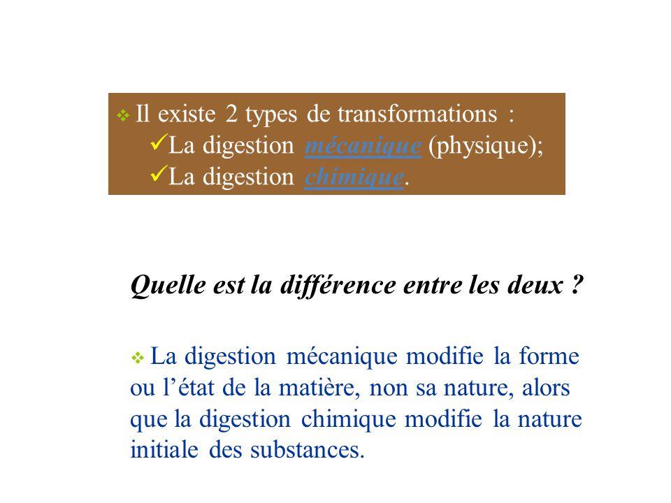  Il existe 2 types de transformations : La digestion mécanique (physique); La digestion chimique.