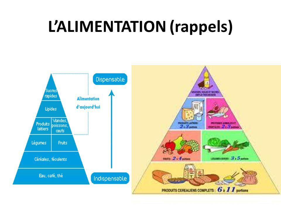 L'ALIMENTATION Les ALIMENTS absorbés par l'organisme sont composés d'un mélange d'éléments chimiques, LES NUTRIMENTS.