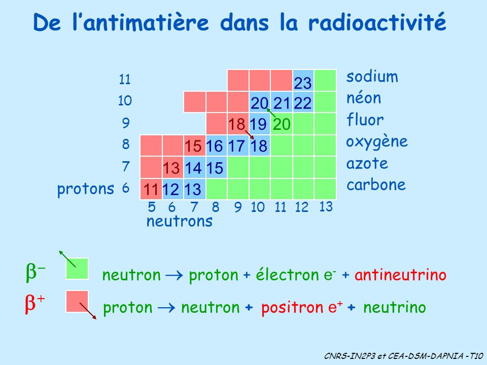De lantimatière dans la radioactivité oxygène azote carbone sodium néon fluor neutrons 11 10 9 8 7 6 protons 61211109875 13 proton neutron + positron