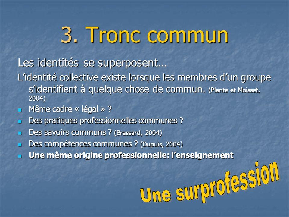 3. Tronc commun Les identités se superposent… Lidentité collective existe lorsque les membres dun groupe sidentifient à quelque chose de commun. (Plan