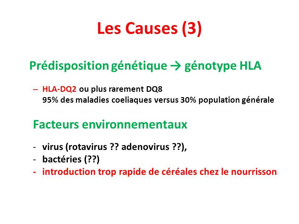 Les Causes (3) Prédisposition génétique génotype HLA – HLA-DQ2 ou plus rarement DQ8 95% des maladies coeliaques versus 30% population générale Facteurs environnementaux -virus (rotavirus ?.