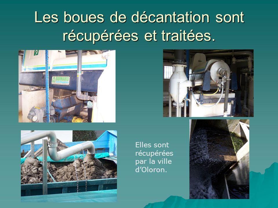 Les boues de décantation sont récupérées et traitées. Elles sont récupérées par la ville dOloron.