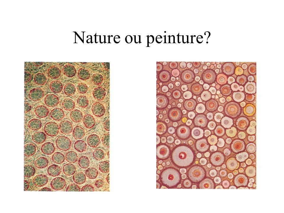 Des tableaux abstraits contiennent fréquemment des formes naturelles sans que lassociation nait été délibérée.