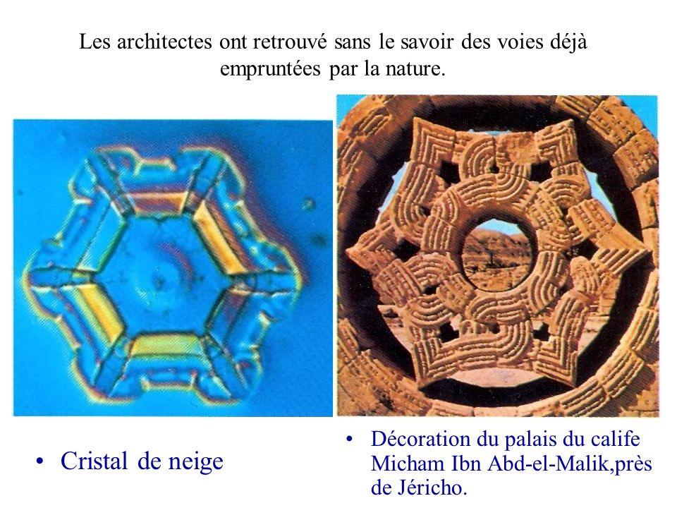 Les architectes ont retrouvé sans le savoir des voies déjà empruntées par la nature. Cristal de neige Décoration du palais du calife Micham Ibn Abd-el