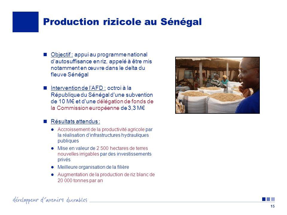 15 Production rizicole au Sénégal Objectif : appui au programme national dautosuffisance en riz, appelé à être mis notamment en œuvre dans le delta du fleuve Sénégal Intervention de lAFD : octroi à la République du Sénégal d une subvention de 10 M et d une délégation de fonds de la Commission européenne de 3,3 M Résultats attendus : Accroissement de la productivité agricole par la réalisation dinfrastructures hydrauliques publiques Mise en valeur de 2.500 hectares de terres nouvelles irrigables par des investissements privés Meilleure organisation de la filière Augmentation de la production de riz blanc de 20 000 tonnes par an